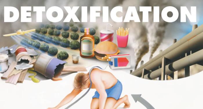 whole body detox cleanse